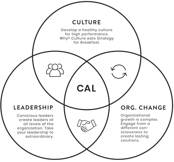 Certified Agile Leadership highlight diagram with culture, leadership and organisational change