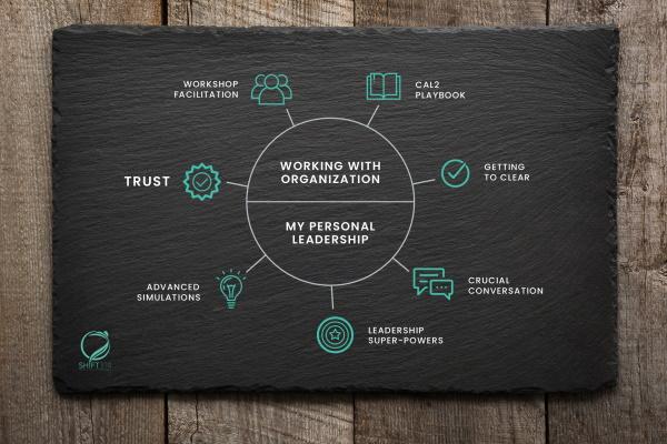 certified agile leadership 2 CAL 2 diagram